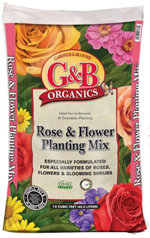 GBO Rose and Flower Mix