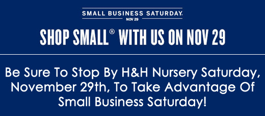 Take Advantage of Small Business Saturday