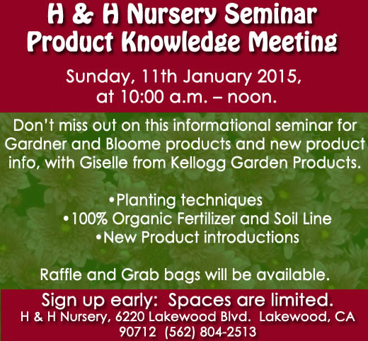 Seminar - Jan.11