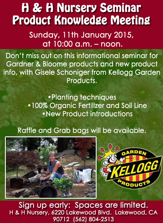 Special Event this Sunday