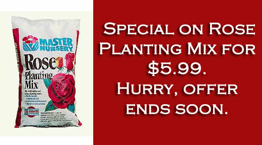 Master Nursery Rose Planting Mix