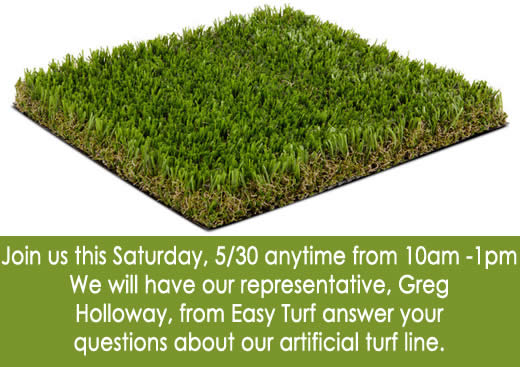 Easy Turf Q&A: May 30th, 10 Am to 1 PM