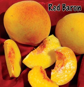 peach red baron