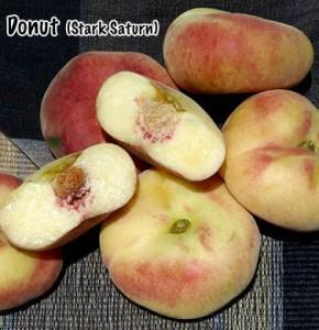 peach stark saturn