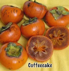 persimmon coffecake